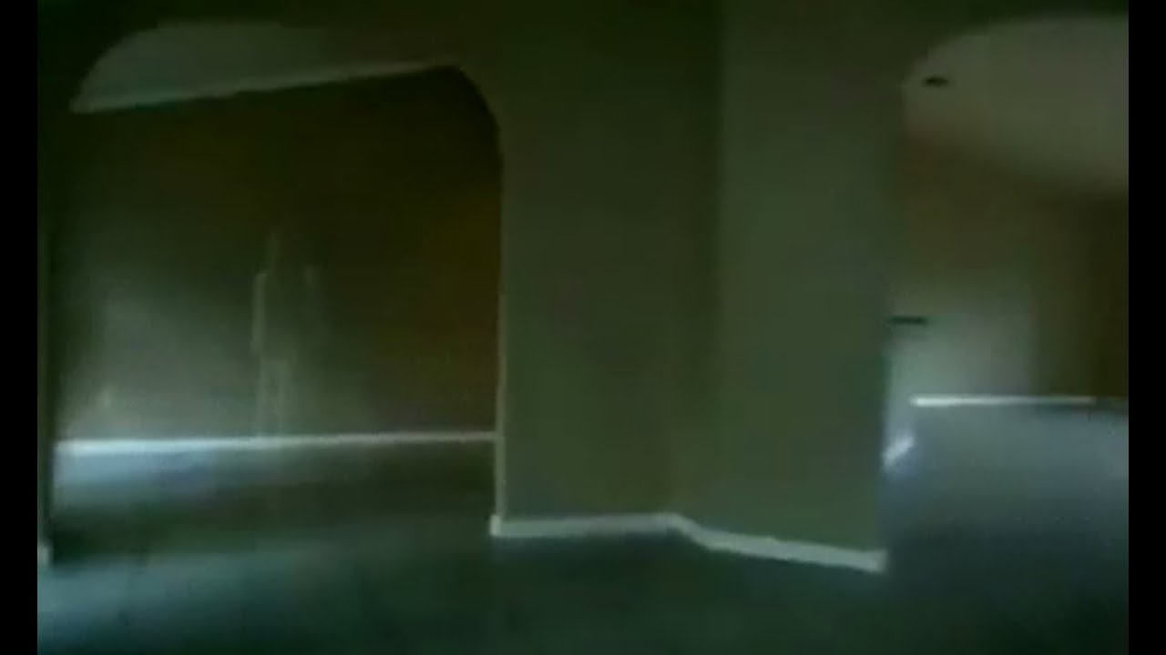 Ghost Sighting During A House Inspection