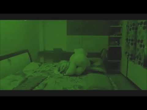 Possessed Teddy Bear Moves On it's Own